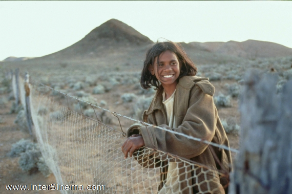 essays about the rabbit proof fence